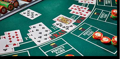Blackjack lodge coromandel
